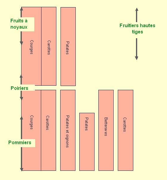 Plan n° 5 : Fruitiers et légumes de garde